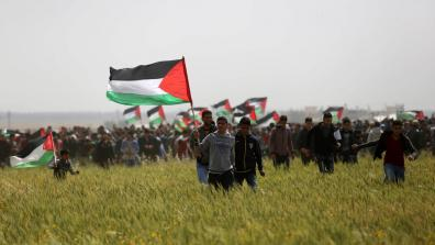 Great March for Palestine with people holding up flags and marching on a field