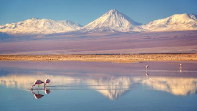 The Atacama Desert and the glacier under threat from mining. Photo: Delpixe